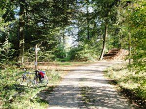 Radfahren, Stechlinsee und Picknick