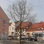 4.04 Havel – Schorfheide – Tour